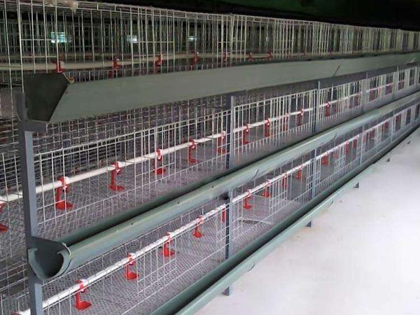 ceng叠shi肉鸡养殖笼