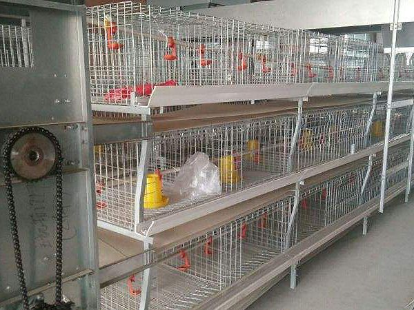 ceng叠shi肉鸡养殖设bei